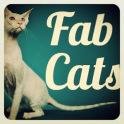 Fab Cats sounds videos photos