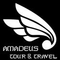 Amadeus Travel