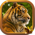 Tiger Free HD live wallpaper