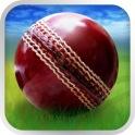 Cricket WorldCup Fever