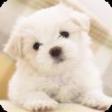 Puppy dog Live Wallpaper