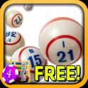 3D Bingo Casino Slots - Free