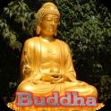 Gautama Buddha Live Wallpaper
