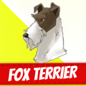 Fox Terrier Dogs