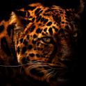 Leopard Silhouette LWP