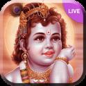 Lord Krishna Janmashtmi