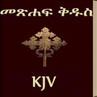 amharic bible free download pdf