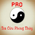 Feng Shui Tip Pro