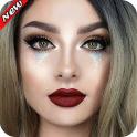 Maquillaje De La Cara Fotos