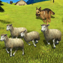 Sheep Shepherd Dog Simulator