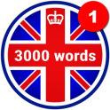 3000 palabras