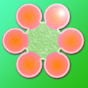 Six Flower