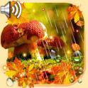 Lluvia de otoño Fondos Pantalla Animadosdos