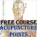 Acupuncture Points In Full Body Book