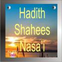 Hadith Shaheeh An Nasai