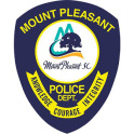 Town of Mt Pleasant Police