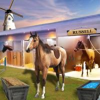 My horse hotel resorts