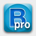BeWorded Pro