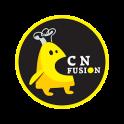 China Fusion