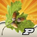 Purdue Tree Doctor