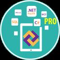 Learn .Net Framework Pro