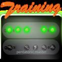 Pentatonic Guitar Training