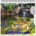 Unique Fish Pond Design