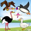 Птицы игра для детей ребенок