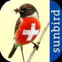 All Birds Switzerland