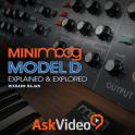 Minimoog Model D Intro Course
