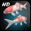Koi Fish Live Wallpaper 3D