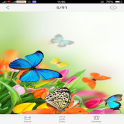 Flowers and Butterfly Themes