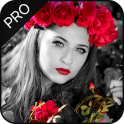 Color Splash Effect Editor