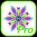 Color Kaleidoscope Pro