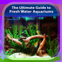 Guide to Freshwater Aquariums