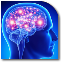 Epilepsy Guide