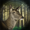 Deer Expert Hunter