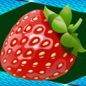 Strawberry Photo Collage