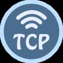 TCP Socket