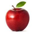 Apple Sqaures