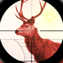 Deer Expert Shooter