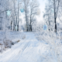 Snowfall HD Live Wallpaper Pro