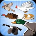 Happy Aviary - Chose your Bird