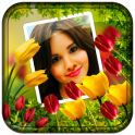 Flower Photo Frames Live wallpaper