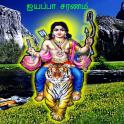 Ayyappan Sarana Gosham