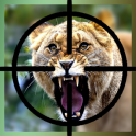 Forest Animal Sniper Hunting