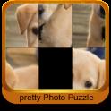 Puzzle Fun Photos