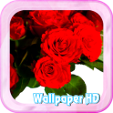Rose Wallpaper live Beautiful