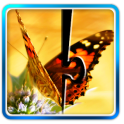 Butterfly Jigsaw Puzzle 02
