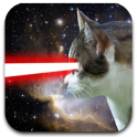 Katze Laser